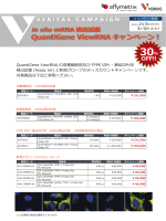 QG ViewRNAキャンペーンフライヤー.indd