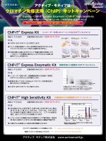 クロマチン免疫沈降(ChIP)キットキャンペーン