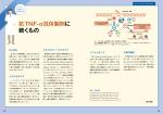 抗TNF-α抗体製剤に 続くもの