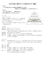 2015 年度 横浜 FC U-12 強化カテゴリー概要