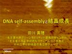 DNA self-assemblyと結晶成長