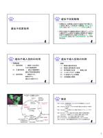 遺伝子改変技術 遺伝子改変動物 遺伝子導入技術の利用 遺伝子導入