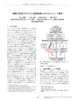 複数の粒度でのLDA適用結果におけるトピック集約