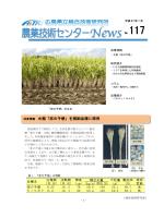 (PDFファイル)(1.3MB)