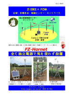FZ-Hornet - アスペクト・システム