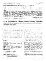 本文PDF [2410K] - J