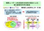 講演ファイル (2.26MB) - 光・量子融合連携研究開発プログラム