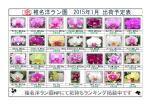 椎名洋ラン園 2015年1月 出荷予定表