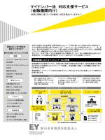 マイナンバー法 対応支援サービス (金融機関向け)