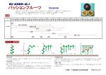 「パッションフルーツ」の栽培技術(PDF:966KB)