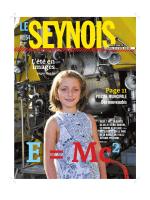Le Seynois