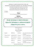 Thèse Option - Catalogue en ligne La Bibliothèque Universitaire
