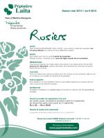 Catalogue des prix 2014-2015