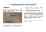 Lien vers le texte du projet - Mécanique Matériaux Structure
