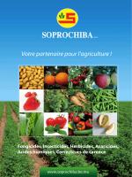 Précautions à prendre - Soprochiba - El Jadida