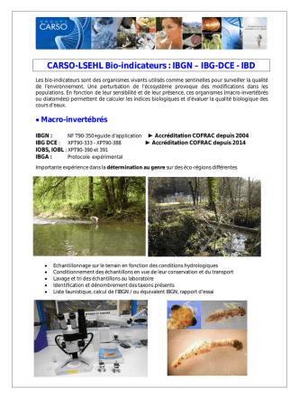 CARSO-LSEHL Bio-indicateurs : IBGN – IBG-DCE