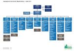 Organigramme des services administratifs