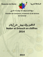 Nador et Driouch en chiffres ar-fr 2014