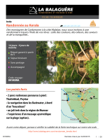 Randonnée au Kerala
