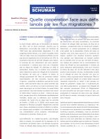 version PDF - La Fondation Robert Schuman
