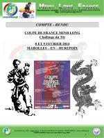 COMPTE RENDU Coupe de France MINH LONG 2014