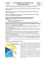 Activité 7 la formation de combustible fossile