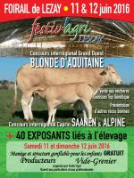 France Blonde d`Aquitaine