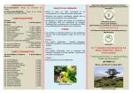 Brochure SIPMSE-2013 - Université de M`sila