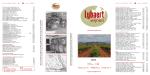 Wijnen Lybaert