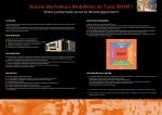 Bourse des Valeurs Mobilières de Tunis (BVMT)