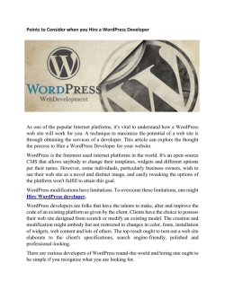 Points to Consider when you Hire a WordPress Developer