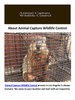 Animal Capture Wildlife Control in Los Angeles, CA