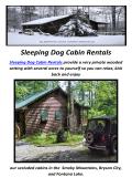 Sleeping Dog Cabin Rentals in Bryson City, NC