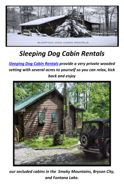 Sleeping Dog Cabin Rentals in Bryson City, NC