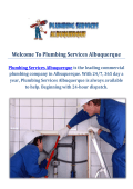 Professional Plumbers by Plumbing Services Albuquerque