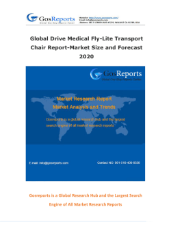 Global Drive Medical Fly-Lite Transport Chair Report-Market Size and Forecast 2020