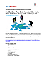 Fossil Fuel Fired Water Heater Market in China: Market Share, Market Size, Market Trends and Analysis 2021