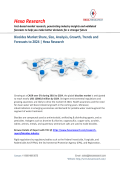 Biocides Market Analysis and Trends, 2024