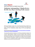 Methionine Aminopeptidase 2 Pipeline Review, H2 2016  Key Player and Drug Profile Analysis