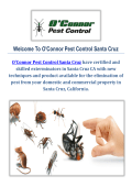 O'Connor Pest Control Company in Santa Cruz, CA