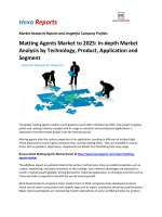 Matting Agents Market to 2025 In-depth Market Analysis by Technology, Product, Application and Segment