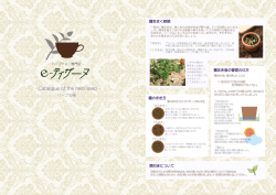 Catalogue of the herb seed - ハーブティー専門店 e
