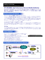 AP-MG3000, High Performance Secure Media Gateway