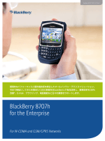 BlackBerry® 8707h for the Enterprise