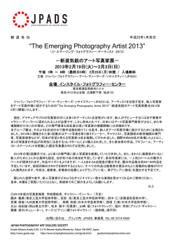 The Emerging Photography Artist 2013