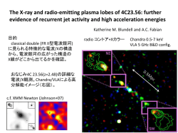 The X-ray and radio-emitting plasma lobes of 4C23.56: further