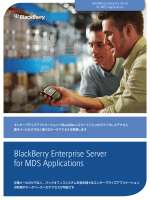 BlackBerry Enterprise Server for MDS Applications