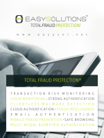 Total Fraud Protection Brochure (日本語)