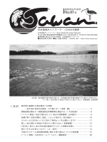 No.81 2005年6月30日発行 - Japan Wetlands Action Network