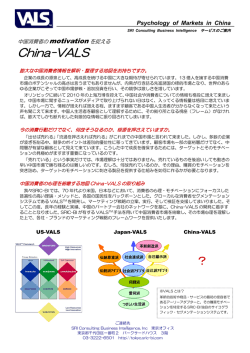 China-VALS - Strategic Business Insights